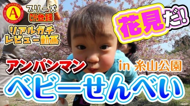 花見だ!アンパンマン ベビーせんべい&かむ育バーを食べたぞ! in 糸山公園